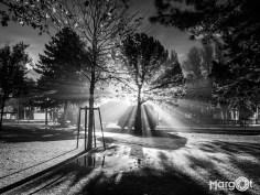 Tegenlicht - Landshaftspark Duisburg