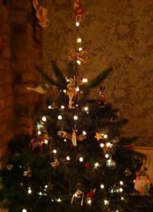 Mr Tree!