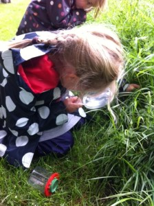 On the hunt for some creepy crawlies...