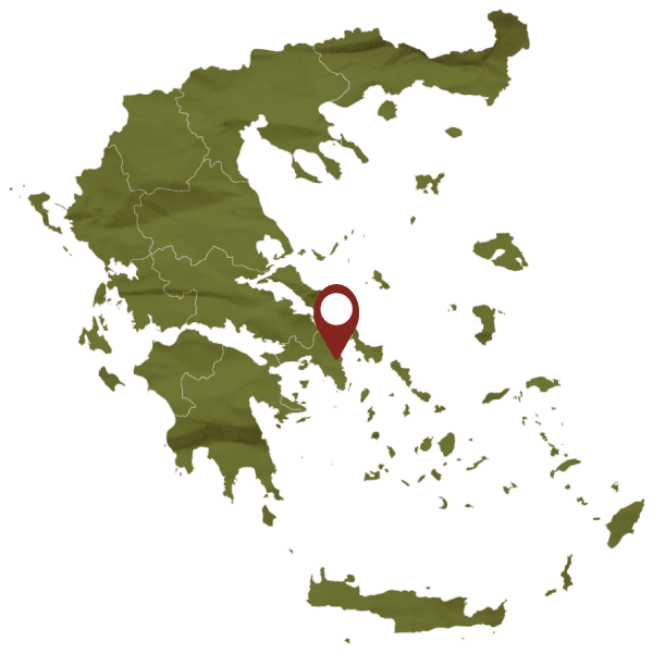 Attici map, Tourism - Itineraries - Greek wine