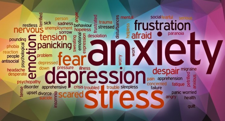 Adult anxiety autism disorder in
