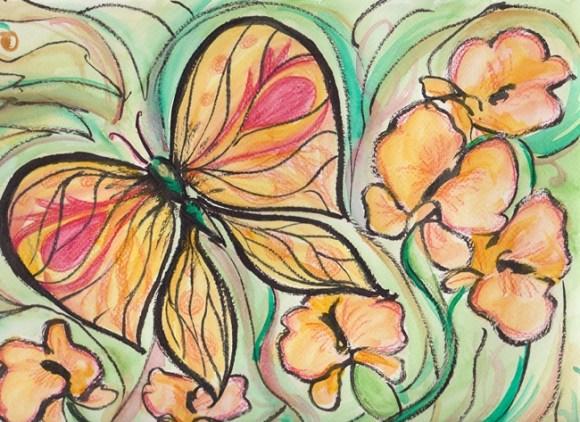 Papillon-comp