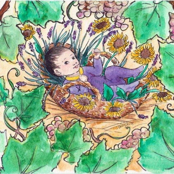 Illustration faire-part Martin