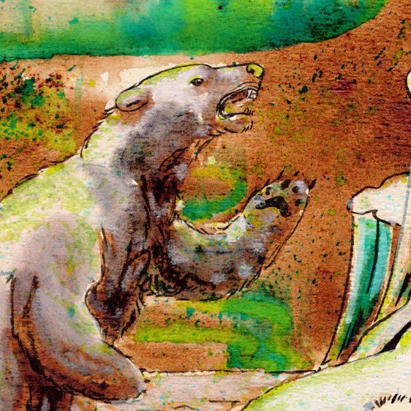 Aurore boréale - illustration