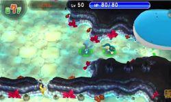 Pokemon-Mega-Donjon-Mystere-03
