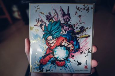 Dragon-Ball-Fighter-Z-Edition-Collector-Z-10