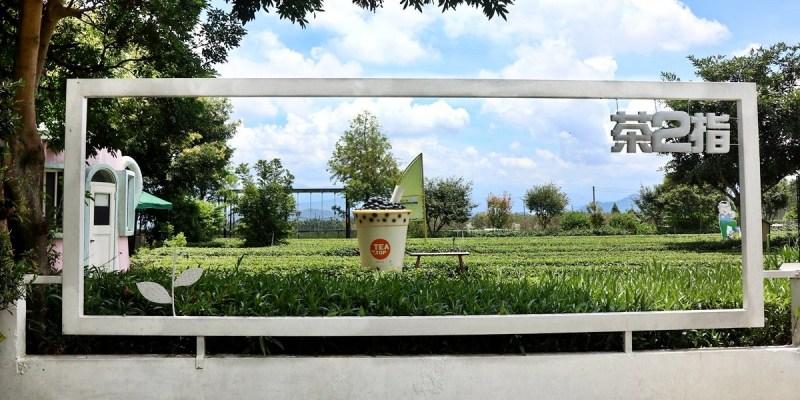 南投名間景點 茶二指故事館 綠油油茶園 巨無霸珍奶 水管屋好玩好拍又能享受慢活