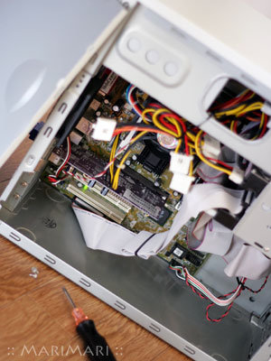 20070202_1.jpg