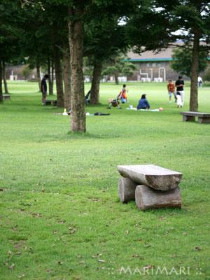 20070916_2.jpg