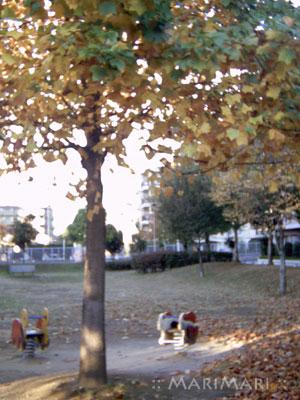 20071119_2.jpg