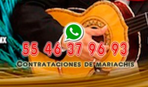 Mariachis pago con tarjeta  Mariachis pago con tarjeta Mariachis pago con tarjeta mariachis pago con tarjeta