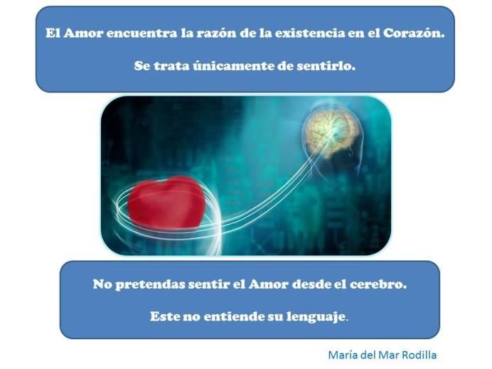 El Amor encuentra la razón de la existencia