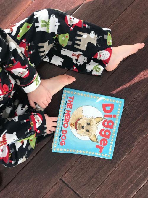Book Review-Digger the Hero Dog - mariadismondy.com