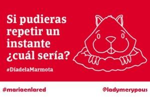 #DíaDeLaMarmota: ¡los mejores twits!