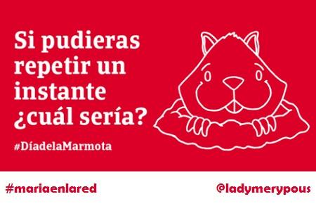 Día de la marmota: ¡los mejores tweets!