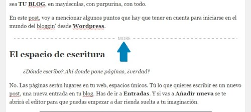 wordpress-barra-etiqueta-more-vista