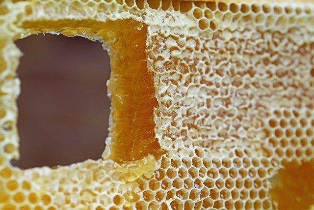 cire d'abeille pour bougies écologiques