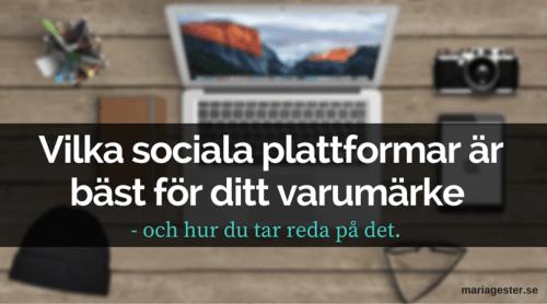 Vilka sociala plattformar är bäst för ditt varumärke