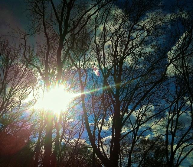 Day 60/2: Winter sun lens flare in Riverside Park.