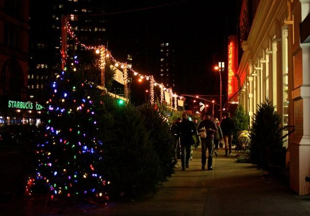Day 72:3 Christmas Tree Shopping