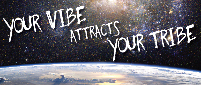 Image result for your vibe attracts your tribe