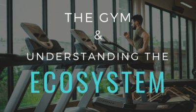 The Gym: Understanding the Ecosystem