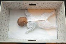 Finnish baby in a cardboard box