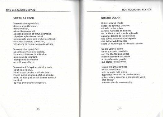 Poema de María Juliana Villafañe