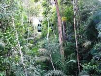 Parque Gamboa Rainforest Resort, con el teleférico entre la selva