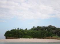 Cientos de pájaros sobrevuelan la isla Bartolomé