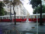 Un tranvía llamado deseo circula por el centro de Vienna