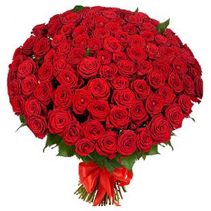 buchet-din-101-de-trandafiri-rosii-1yBt9[1]