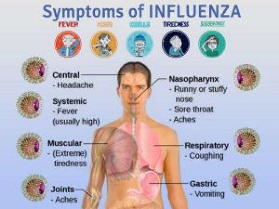 Influenza.jpgFLU 300x225 - We Can Prevent Outbreak Go to Pandemia