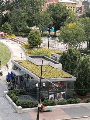 Green roof! Go, Cincy!