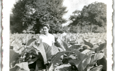 Memoir Moment with Mom in the Tobacco Field