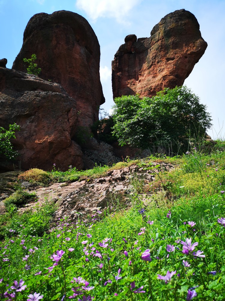 Belogradchik in the Spring