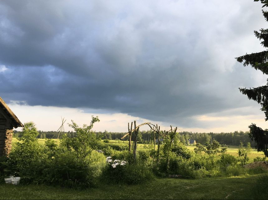 View to the Food forest of Avarmaa