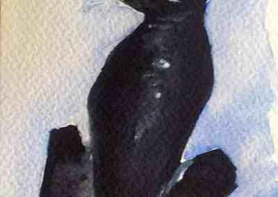 Black Cat, watercolor, original greeting card by @ MariAnna MO Warr