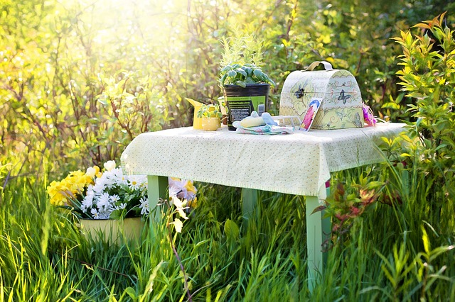 idemagasinet.no - tips og ideer til late sommerdager - Piknik i skogen på et bord