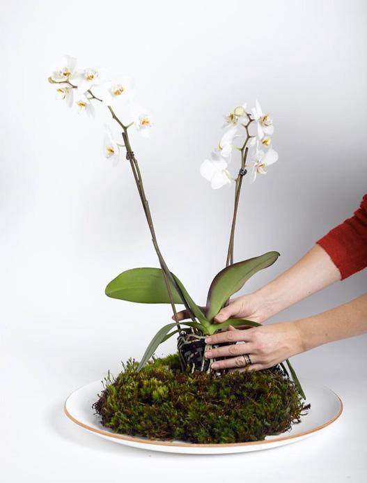Ingeniørfruen lager blomsterdekorasjon 3