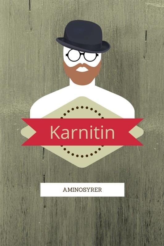 Ingeniørfruen-om-aminosyrer-Karnitin