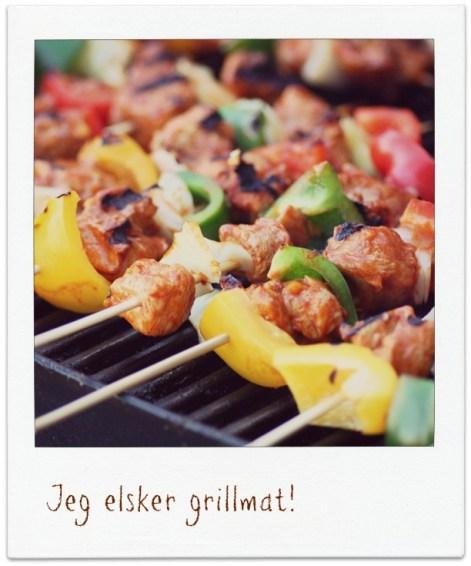 MIN-MATDAGBOK-Kylling-med-verdens-beste-marinade