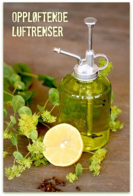 DIY-Aromaterapi-lag-selv-oppskrift-på-oppløftende-luftrenser