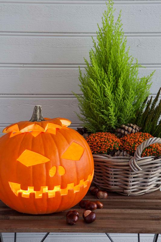 DIY Lær å lage gresskarlykt til Halloween og allehelgensaften