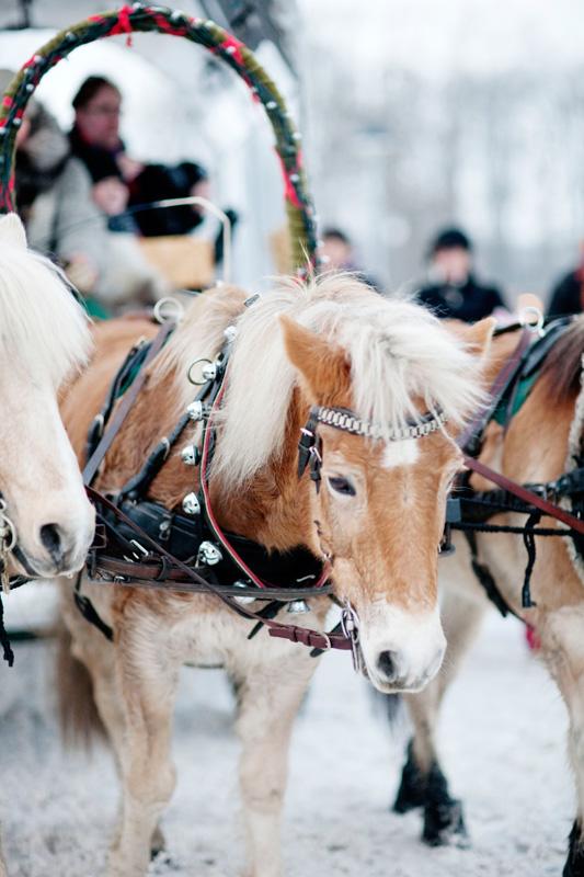 REISETIPS - Julemarkeder i Sverige Foto: Anna Alexander Olsson