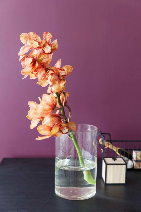 INTERIØRTIPS OG INSPIRASJON Orkideer som dekorasjon på soverom