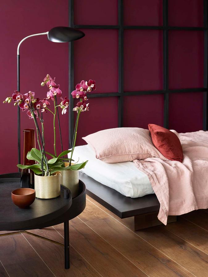 INTERIØRTIPS Orkideer på soverommet