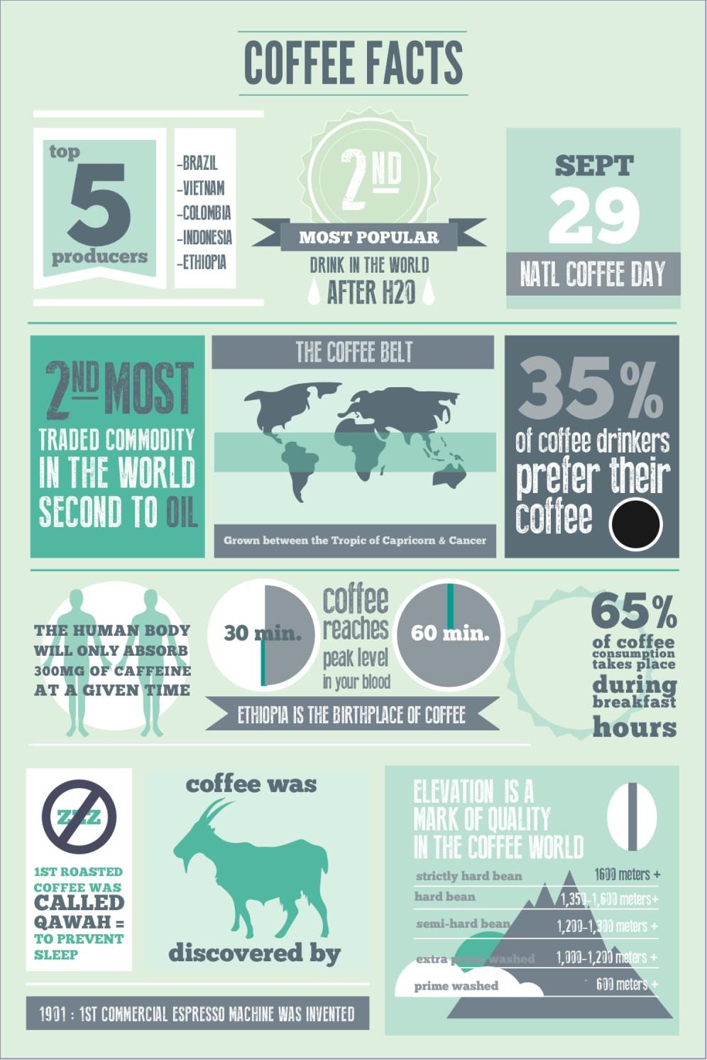 COFFEE_INFO1