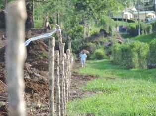 Siembra 2016 - Finca La Hilda, Grupo Santa Eduviges (Costa Rica)