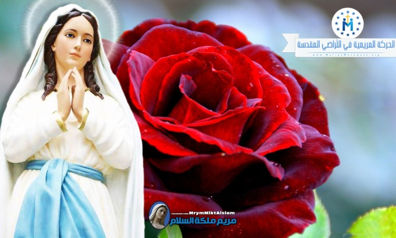 Photo of تساعية مريم ملكة السلام – اليوم الثالث